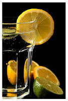 Gin and Tonic by shutterpink