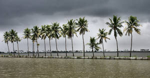 Backwaters during monsoon 5