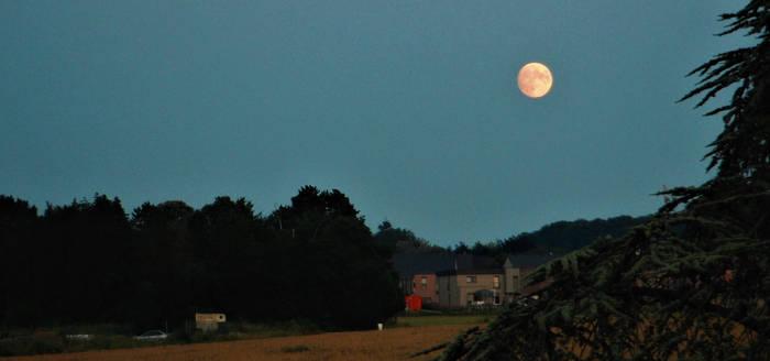 pink moon July 22