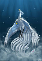 Without Wings I Can't Fly
