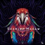 Scarlet Macaw Album Art for Griffin