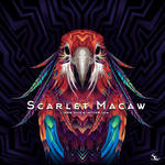 Scarlet Macaw Album Art for Griffin