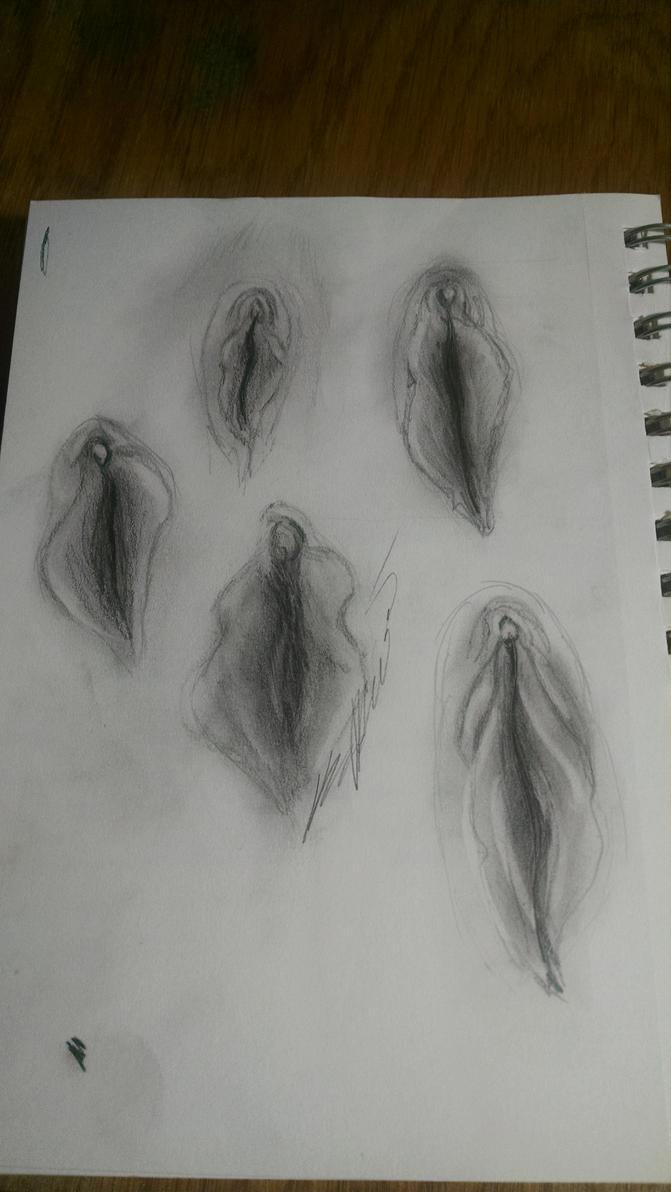 Vulva1 by cheshirekttty