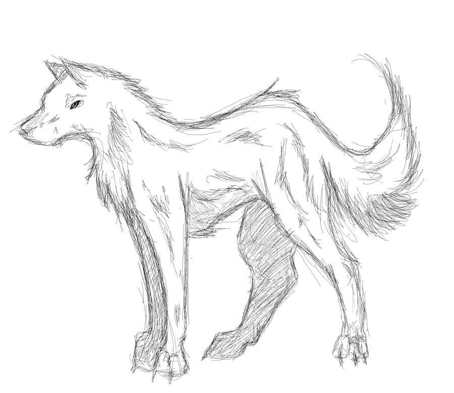 Inay. Point. - Page 2 Wolf_sketch_by_Inay
