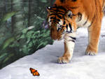 A flying tiger?