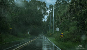 Rainy Drive