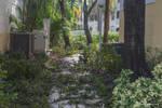 Irma's Pool - Rear