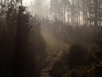 Misty morning by Navratin
