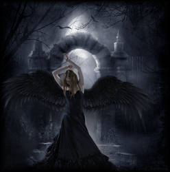 Dark Angel by Navratin
