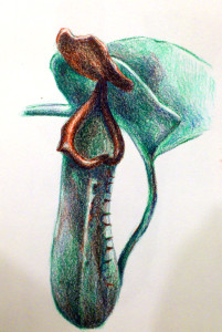 ASD92's Profile Picture
