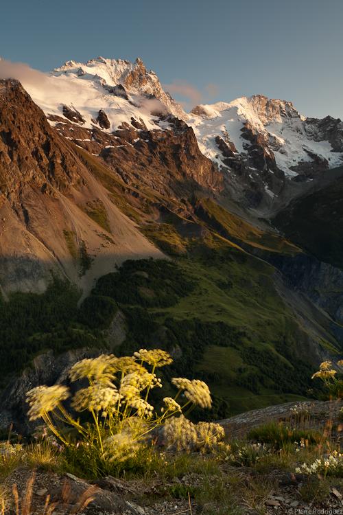 Petite brise du soir, Hautes Alpes by PierreRodriguez