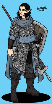 Grey Elf Moonguard