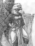 Sky Warden