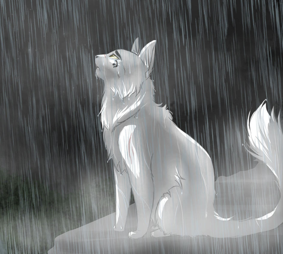 Whitestorm by RiverSpirit456