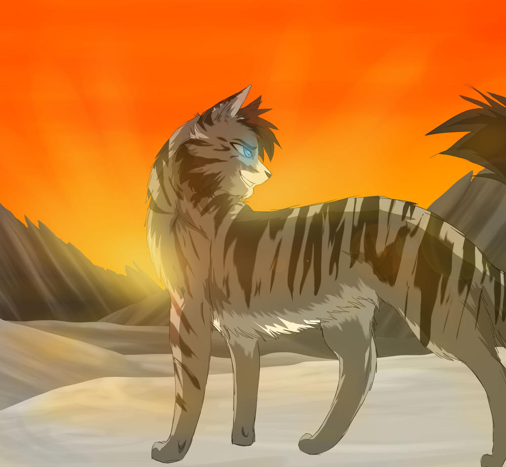 Apprentices Warrior Cats Untold Tales: {Remake} BlizzardClan Adn Duskclan-the Quiet And Wise