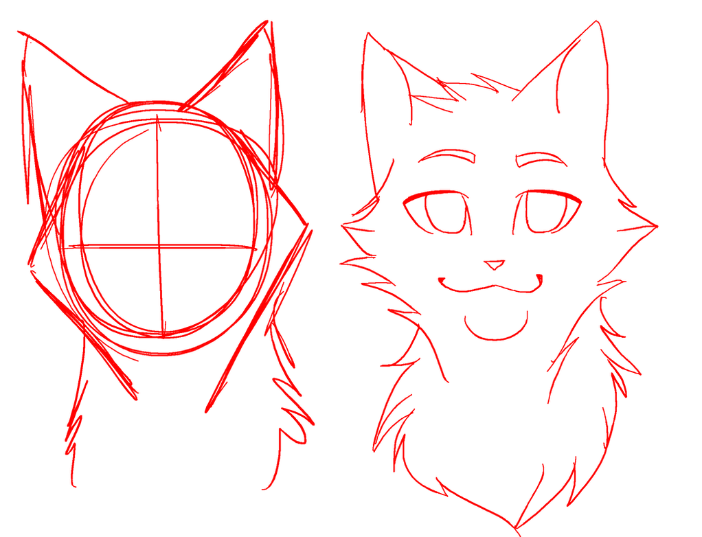 how to draw a cat base