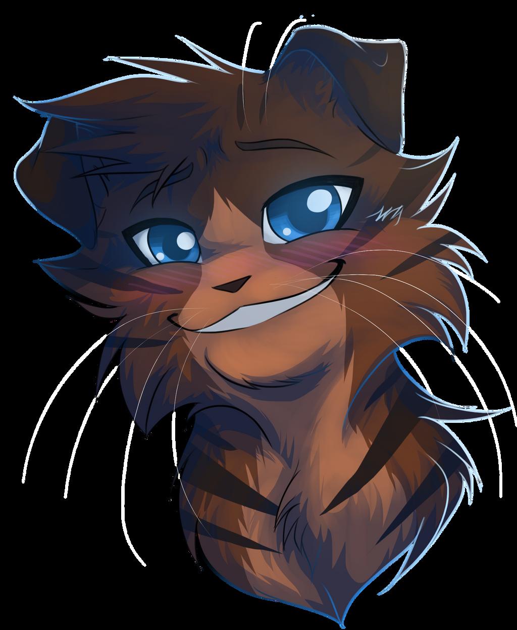Cat S Eyes  Vf