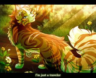Traveler by RiverSpirit456