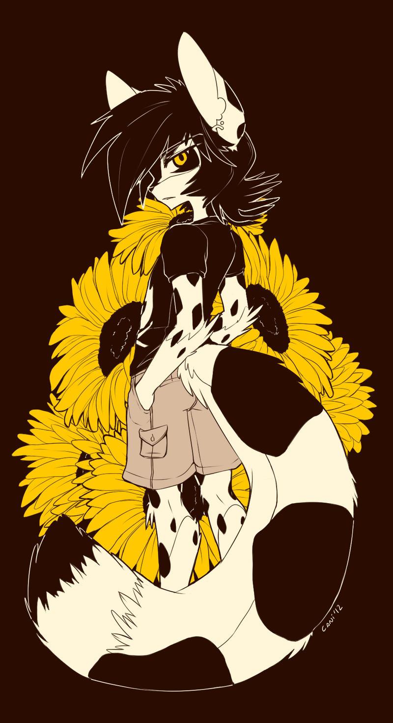 Like a Sunflower by caninelove