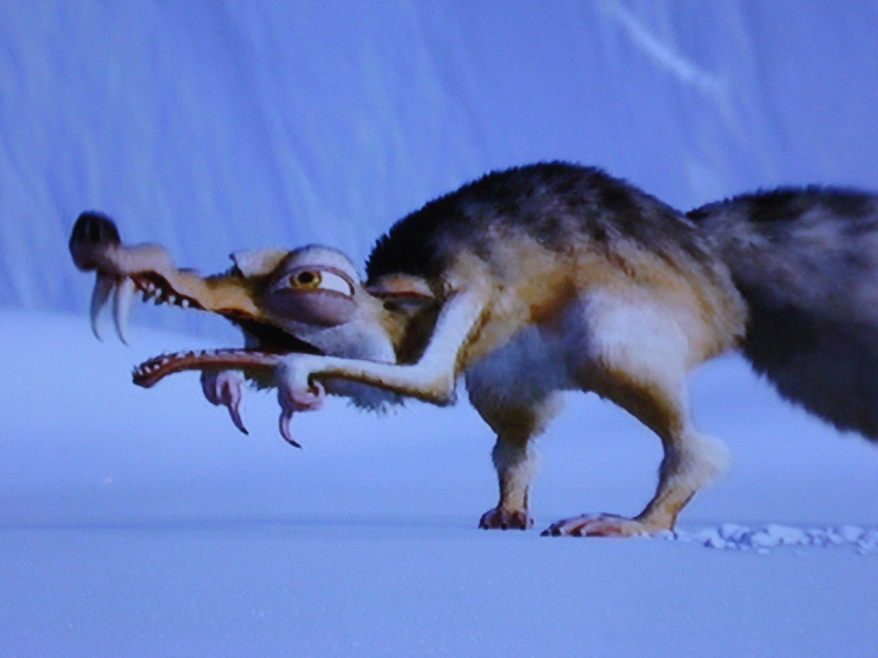 образом фото крысобелки из ледникового периода оживить
