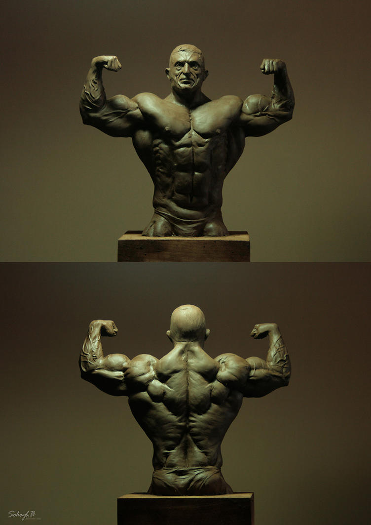 Front Double Bicep by soheyl