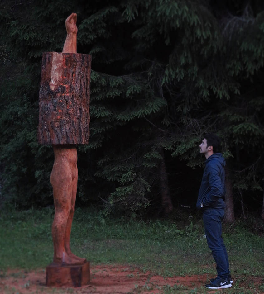 Sound of Tree