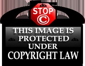 Copyright Tag for Deviants 5 by rclarkjnr