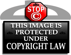 Copyright Tag for Deviants 5