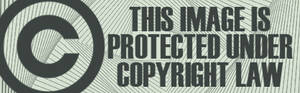 Copyright tag for Deviants 16