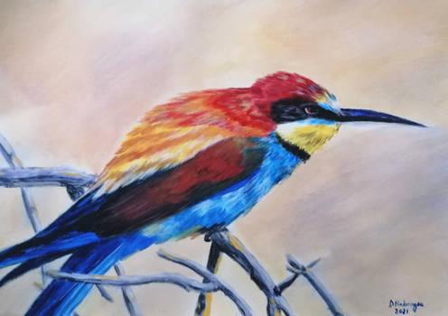 Prigorie (Merops apiaster)