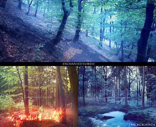 Premade backgrounds ENCHANTED FOREST by ForestGirlStock
