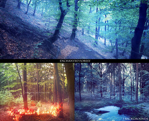 Premade backgrounds ENCHANTED FOREST