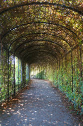 green path04 by ForestGirlStock