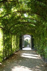 green path03