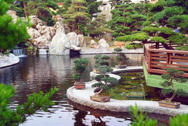Chinese Pond By Forestgirlstock On Deviantart