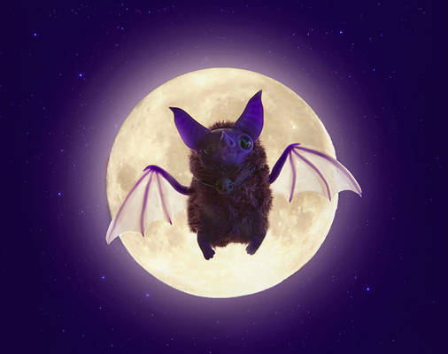 OOAK art toy Purple Bat doll fantasy handmade