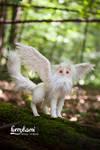 Gryphon albino