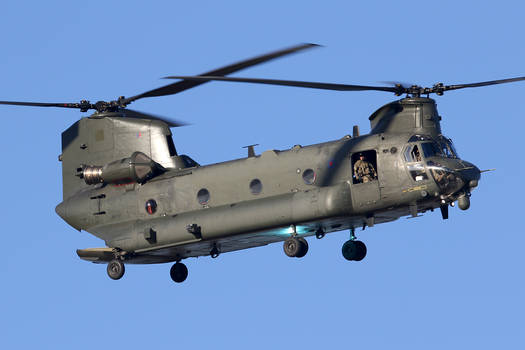 First Chinook back #1