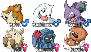 Marriland's HeartGold Wedlocke - The Johto Team