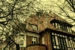 Trees, house, Tczew.