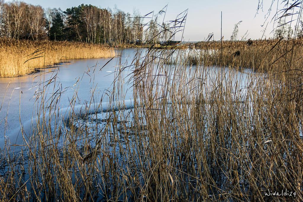The outskirts of Gdansk by wiwaldi24