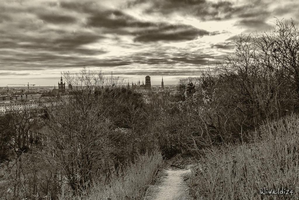 Panorama of Gdansk by wiwaldi24