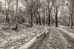 Last days of winter ... by wiwaldi24