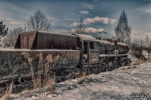 The Polar Express by wiwaldi24