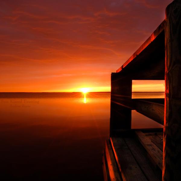 Sun Kissed Evening