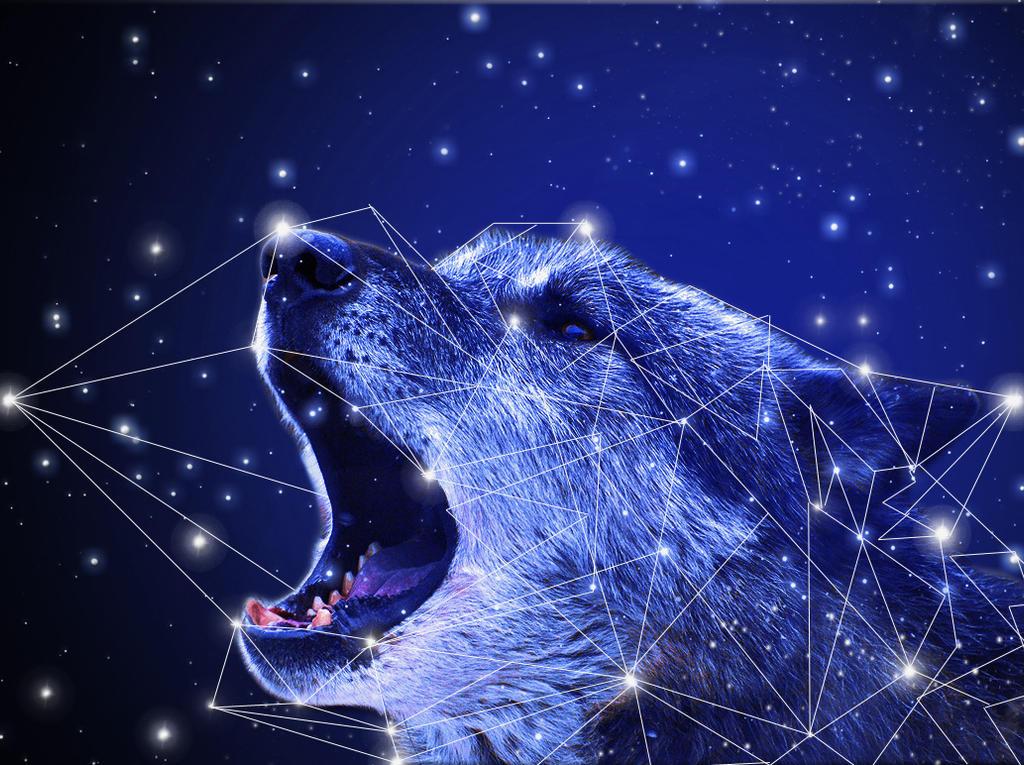 Wolf Howling By IkyuValiantValentine