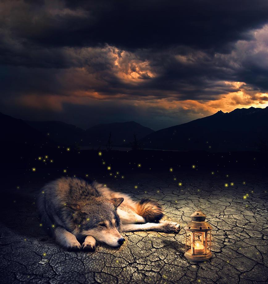 Lonely wolf by IkyuValiantValentine