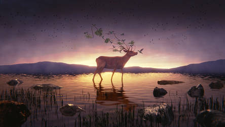 Tranquility #3 by IkyuValiantValentine