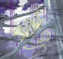 Dragons by StellaB