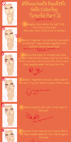 SAI Semi-Realistic Skin Coloring Tutorial Part 2 by Mikouchan